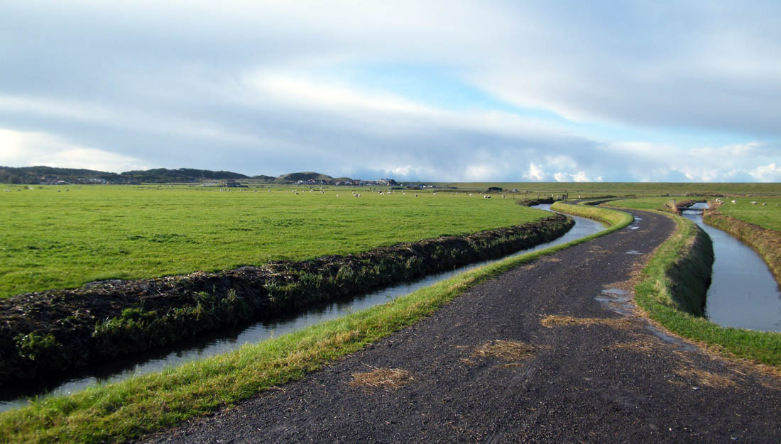photo safari tours visit pristine dutch landscapes still untouched